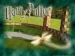 Hier trage ich die verschieden Positionen einer Hausmannschaft im Quidditch ein! Gryffindor: Hüter: Hilary Silver's Treiber: Lily Jamie Stone, M