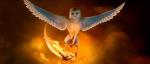 Willkommen bei den Wächtern von Ga'hoole Junger Freund(oder auch nicht Jung? xD) Ich heiße Leah und bin eine Schleiereule Tyto alba. Ich führe