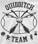 ((unli))((bold))Quidditchteams: ((eunli))((ebold)) ((bold))Gryffindor: ((ebold)) Hüter: Emily Julia Sucher: Jäger: Jäger: Jäger: Treiber: Rosalyn