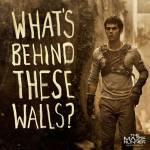 Maze Runner - Die Auserwählten im Labyrinth (Deine eigene Story) Teil 19