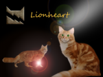 Warrior Cats: Fakten über... Löwenherz