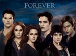 Das offizielle Twilight - RPG