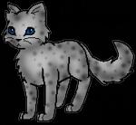 Meine Lieblings Warrior Cats