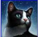 KONZEPT Das Konzept hinter der ganzen Geschichte sind Katzen die die Farbe wechseln, je nach dem ob gerade Blattleere oder Blattfrische ist. Die FF ba