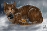 Hey, hier liste ich euch die Katzen die ihr spielen könnt aus dem Buch auf!:-) : Blattsee(W) Feuerherz(M) Graustreif(M) Und ich liste hier eure ausge