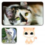 """Kapitel 1: Muskat schmiegte sich an den warmen Bauch ihrer Mutter und atmete den Milchgeruch ein. Ihre Schwester Zelda seufzte: """"Wann macht Muska"""