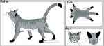 ((bold))Hier ist die Steckbriefvorlage.((ebold)) Name: Geschlecht: Alter: (Mit über 30 Monden seid ihr immer noch junge Katzen!) Rang: Aussehen: Char