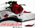 Love Bilder