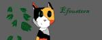 (Das auf dem Bild, ist Efeustern, also ich.^^) ((unli))Steckbriefvorlage:((eunli)) Name: Alter: Geschlecht: Rang: Clan: (Also Clan oder Fighter) Ausse