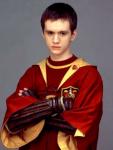 Meine 10 Lieblingscharakter von Harry Potter