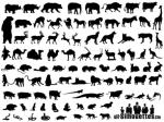 Dein Lieblingstier oder welches Tier magst du von den hier am meisten?