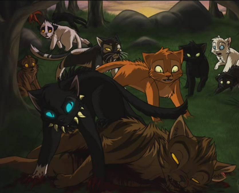 Rotschweif Warrior Cats