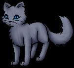 Warrior Cats- Meine Meinung