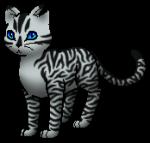 ((bold))Langschweif((ebold)) ((cur))Am Anfang treuer Begleiter von Tigerstern bis er sich von ihm abwand.((ecur)) Ich lieeeebe diesen Charakter. Nein