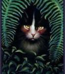 Hallo, ich bin Nachstern die Anführerin des DornenClans. Wir leben in einen Nadelwald, dort ist es sehr dunkel und kalt.Es gibt aber auch einen groß