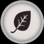 Sturm der Nacht - Der neue BlätterClan