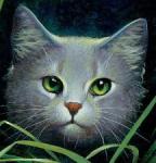 Warrior Cats: Welche Katze passt zu dir?
