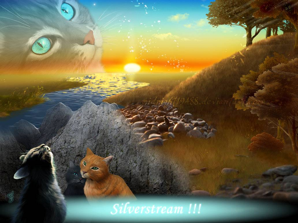Warrior Cats Wolkenclan