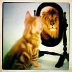 Wie ist dein Selbstbewusst sein?