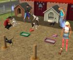 Wie viele Tier-Karrieren gibt es in die Sims 2 Pets?