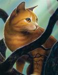 ((bold)) DonnerClan ((ebold)) ((cur)) Die DonnerClan-Katzen sind im Kampf sehr mutig und halten sich an das Gesetz der Krieger, nah ja manchmal kommt