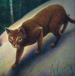 ((bold)) SchattenClan ((ebold)) ((cur)) Der SchattenClan ist ein sehr furchtloser Clan und die meisten Katzen kennen keine Angst. Desweiteren sind sie