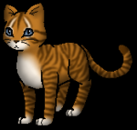 Warrior Cats Quiz- Kleinwolke