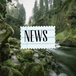 ((bold)) Der Kriegerbau ((ebold)) ((cur)) Hier stehen die Neuigkeiten und Ankündigungen ((ecur)) • Das RPG hat begonnen!
