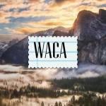 ((bold)) Infos zu WaCa ((ebold)) ((cur)) Hier stehen alle möglichen Fakten und Informationen zu WarriorCats, die ich mit der Zeit einfügen werde ((e