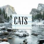 ((bold)) Liste der Katzen ((ebold)) ((cur)) Hier steht immer die Hierarchie, die ich je nach Geschichte ändern werde ((ecur)) ((unli)) Die Urkatzen (