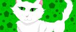Bone... Eine, ehrlich gesagt, warmherzige City cat.:)