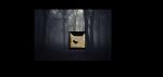 Der RabenClan: Der RabenClan ist unser GegenspielerClan. Er lebt in dem verbotenem Teil des Waldes. Angeblich sollen dort Kreaturen gesichtet worden s