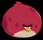 Angry Birds Quiz