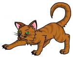 Warrior Cats HeilerQuiz - Schwer!