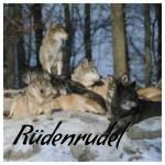 ((bold))Hierachie Rüdenrudel:((ebold)) ((bold))Leader: ((ebold)) Kadeygar ((bold))Healer:((ebold)) Attila ((bold))Healerstudent:((ebold)) ((bold))Hun