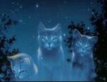 ((bold))DIE CLANS ((ebold)) ((bold))Der SonnenClan:((ebold)) Diese Katzen leben auf freien, weiten Landschaften ohne Bäume. Sie fressen am liebsten K