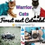 Forest next Catmodel~WaCa
