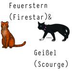 Feuerstern& Geißel