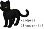 Windpelz