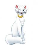 Eine süße Katze und wie ist ihre Name?