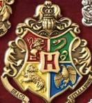 """Kaum war ich eingetreten begann Dumbledore zu reden. """"Also wie sie sicher schon oft bemerkt haben, bekommen Sie oft diese Schwarzen Haare und Aug"""