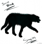 Sirius Black in Animangusgestalt Fanart