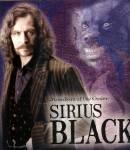 Sirius Black mit Animangusgestalt im Hintergrund