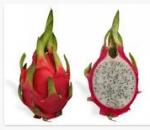 Welche Frucht ist auf dem Bild?
