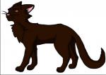 Fakt 11: Mausefell liebte Rotschweif, aber als Sandsturm geboren wurde, schwor sie sich nie wieder zu lieben.