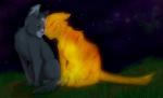 Fakt 7: Blaustern und Feuerstern sind verbunden, weil sie beide eine Prophezeiung haben in der Feuer vorkommt.(Blausterns: Du bist Feuer und wirst dur