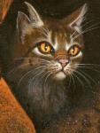 Fakt 8: Die Narbe an Tigersterns Ohr stammt vom Training mit Stachelkralle.