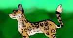 Da seht ihr Jaguarpfote:3 Ich habe versucht, das Muster so gut wie möglich zu machen, es ist leider nicht perfekt, aber nobody is perfect ;3 (Ich mal