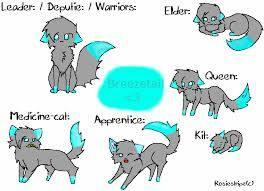 Welche Katze Passt Zu Mir Warrior Cats