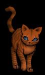 Welche Warrior Cats Katze bist du aus Donnerschlag?